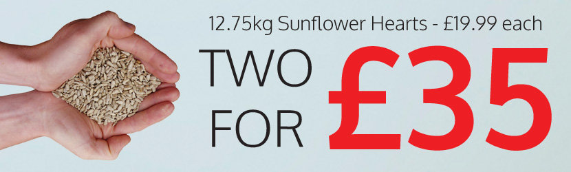 12.75kg Sunflower Hearts 2 for £35